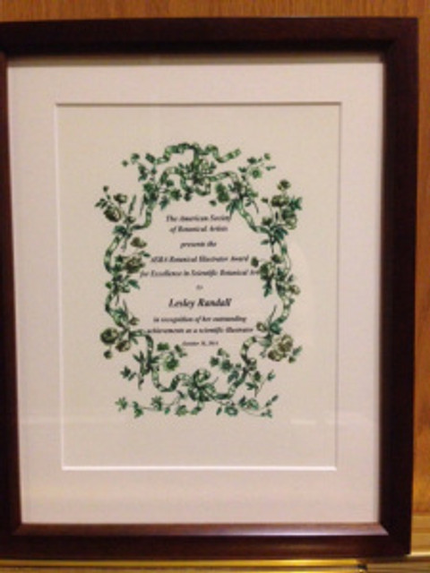 Lesley Randall's ASBA Award for Scientific Botanical Illustration