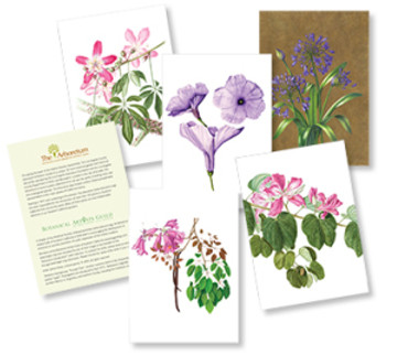 The initial five-pack of LA Arboretum Introduction cards include cards by Cristina Baltayian, Akiko Enokido, and Janice Sharp. The cards are blank inside for messages; the back has text about the Los Angeles Arboretum, BAGSC, the plant, and the artist.