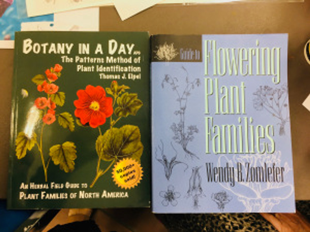 """Two books recommended by Lesley Randall: """"Botany in a Day: The Patterns Method of Plant Identification"""" by Thomas J. Elpel, ISBN-13: 978-1892784353, ISBN-10: 1892784351; and, """"Guide to Flowering Plant Families"""" by Wendy B. Zomlefer, ISBN13: 9780807844700, ISBN-10: 0807844705. Photo by Jude Wiesenfeld, © 2018."""