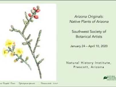 Melanie Campbell-Carter to give a Botanical Talk at The Natural History Institute, Prescott, Arizona