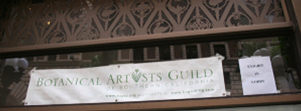 BAGSC Banner in the window of the Fine Arts Building