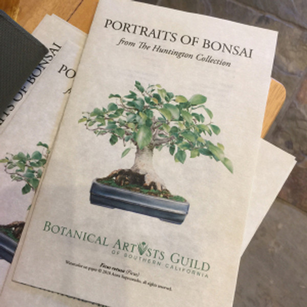 """BAGSC handouts for """"Portraits of Bonsai from The Huntington Collection."""" Cover image, Ficus retusa, watercolor on paper, © 2018 Anna Suprunenko. Brochure and photo by Olga Ryabtsova, © 2018."""