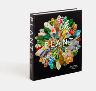 "Special Offer on ""Plant: Exploring the Botanical World"""