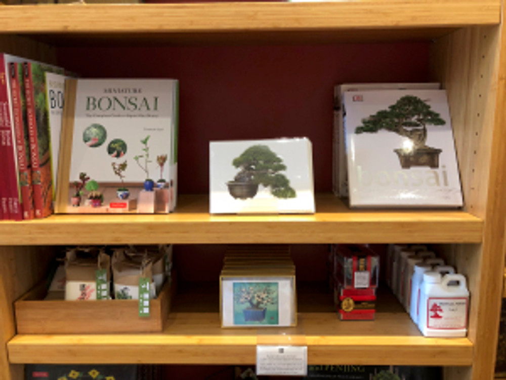 Asuka Hishiki's notecard in The Huntington Store on display in the Bonsai area of the Store.