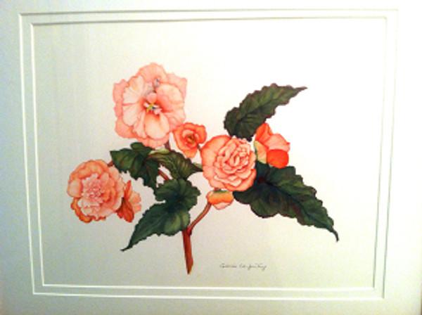 Begonia, watercolor by Gloria Whea-Fun Teng, © 2013
