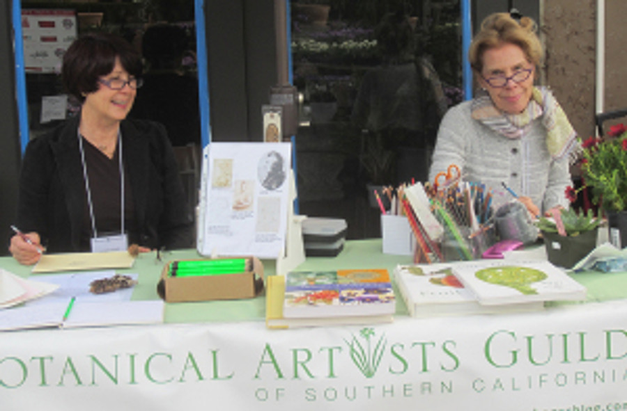 Janice Sharp (left) and Pat Mark (right) demonstrating and staffing the BAGSC Botanical Art Information Table.