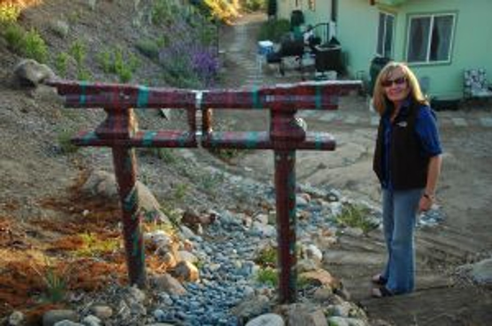 Shinto Arch, recovering landscapes with Jan
