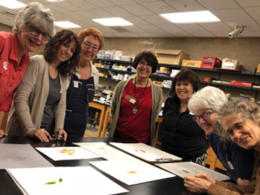 Carrie Di Costanzo Gouache Workshop Review (and a little information about gouache)