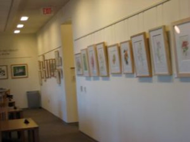 One wall of the show.