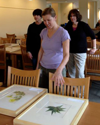 Dr. Jennifer Funk, ecologist with Chapman University, helps categorize the art.