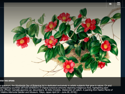 Akiko Enokido and Botanical Art Worldwide Featured as 1 of 15 Exhibitions to See this Spring!