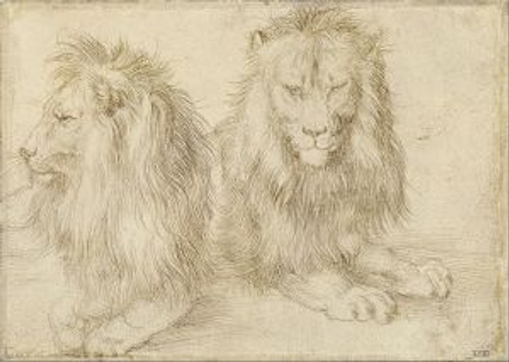 Albrecht Dürer, Two seated lions, 1521, silverpoint on paper prepared with a light tone, located in Kupferstichkabinett Berlin. Downloaded from Wikimedia Commons: this work is in the public domain in the United States and in its country of origin and other countries and areas where the copyright term is the author's life plus 100 years or less.