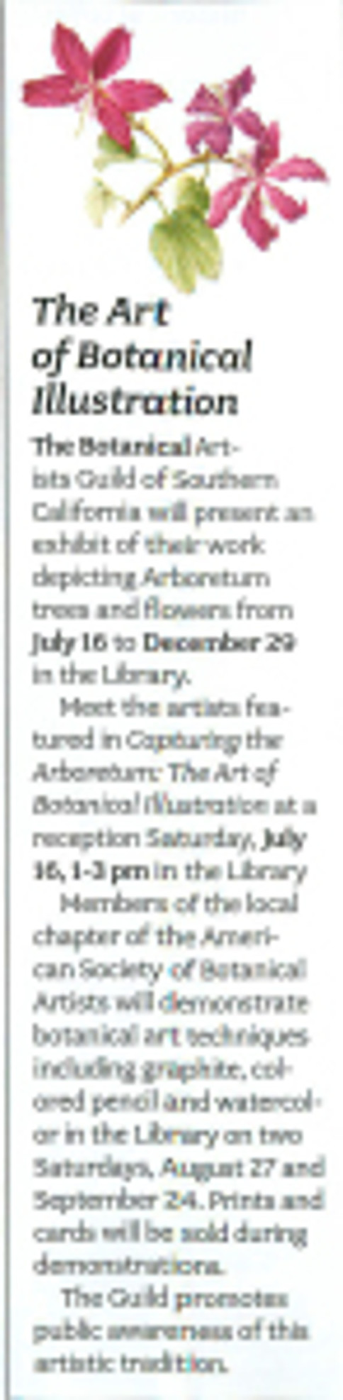 This notice of the Art Show appeared in the latest issue of the Arboretum Newsletter. Artwork by Diane Daly, © 2016, all rights reserved.