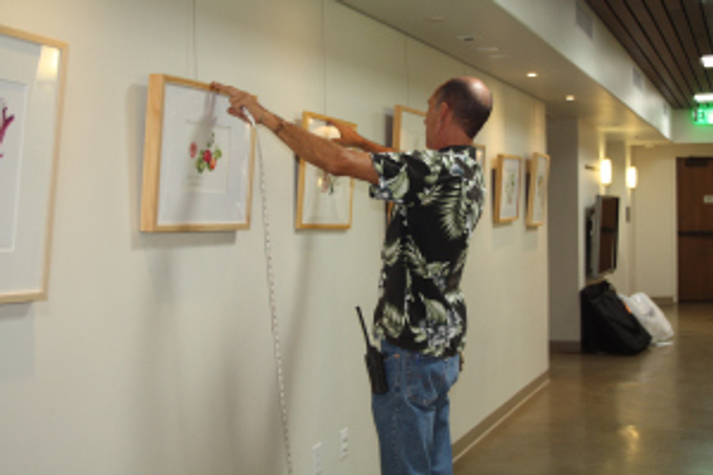 """Hanging the """"Zoo in Bloom"""" BAGSC exhibition at the Santa Barbara Zoo. Photo by Lori Vreeke, © 2015, all rights reserved."""