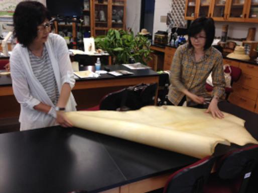 Painting Nepenthes with Mieko Ishikawa