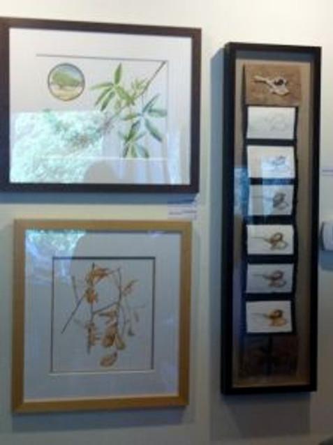 Three of Joan Keesey's paintings.