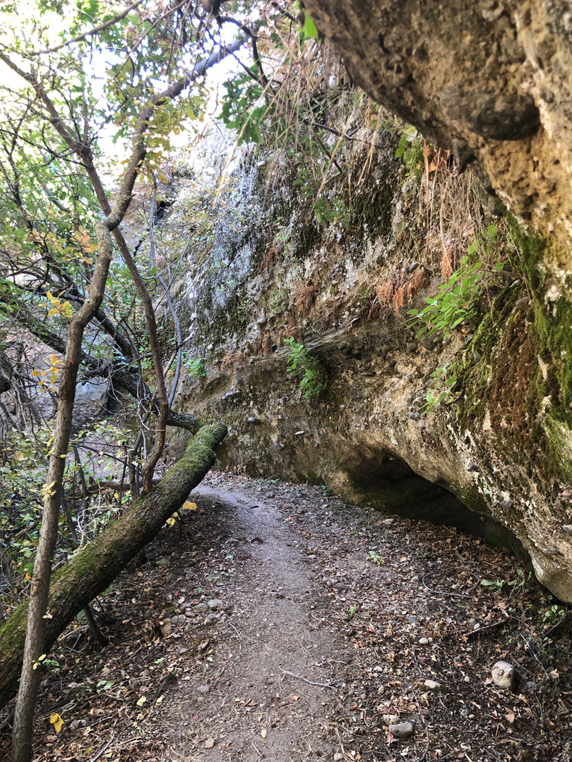 Sept 27 hike (26).JPG