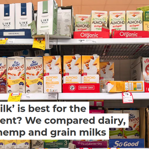 Guest Blog: Which Milk Is Best For The Environment?