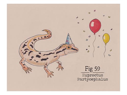 Fig. 59 Euproctus Partycephalus (Print)