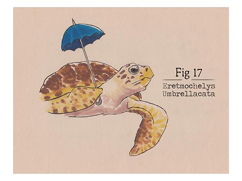 Fig. 17 Eretmochelys Umbrellacata (Print)