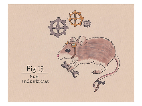 Fig. 15 Mus Industrius (Print)