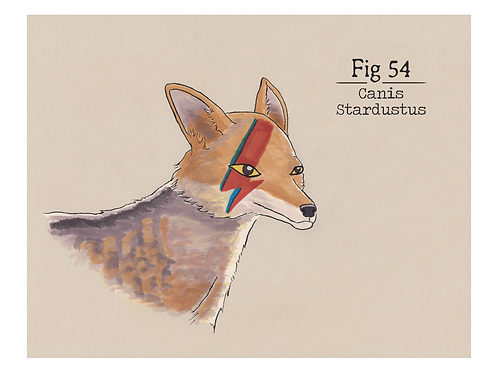 Fig. 54 Canis Stardustus (Print)