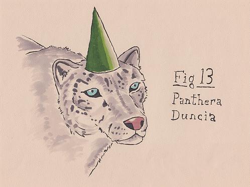 Fig. 13 Panthera Duncia (Original)