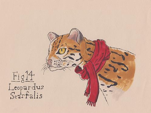 Fig. 14 Leopardus Scarfalis (Original)