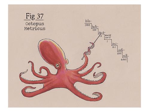 Fig. 37 Octopus Metricus (Print)
