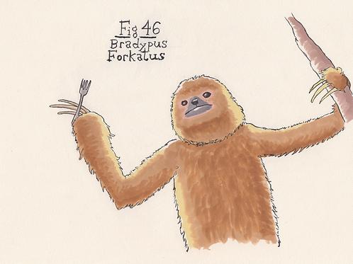 Fig. 46 Bradypus Forkatus (Original)