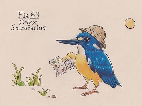 Fig. 63 Ceyx Solsafarius (Original)
