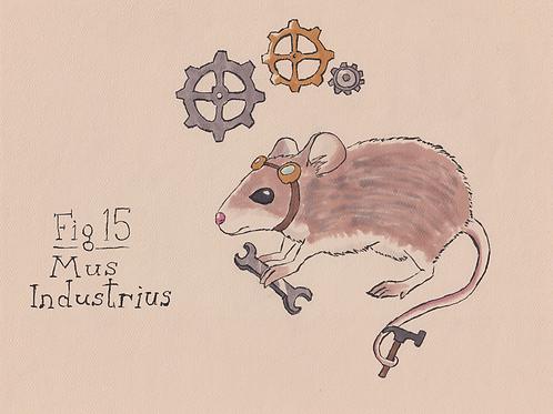 Fig. 15 Mus Industrius (Original)