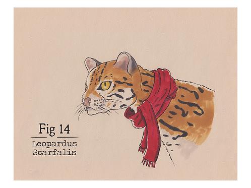 Fig. 14 Leopardus Scarfalis (Print)