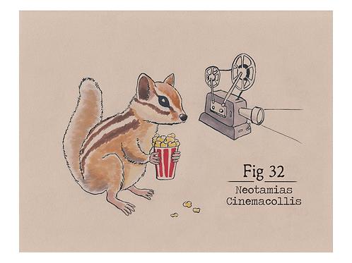 Fig. 32 Neotamias Cinemacollis (Print)