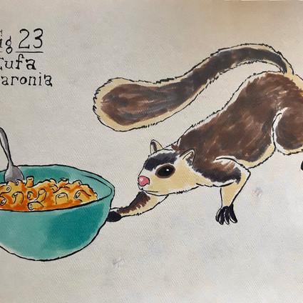 Sermonibus Animalis 23