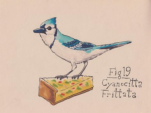 Fig. 19 Cyanocitta Frittata (Original)