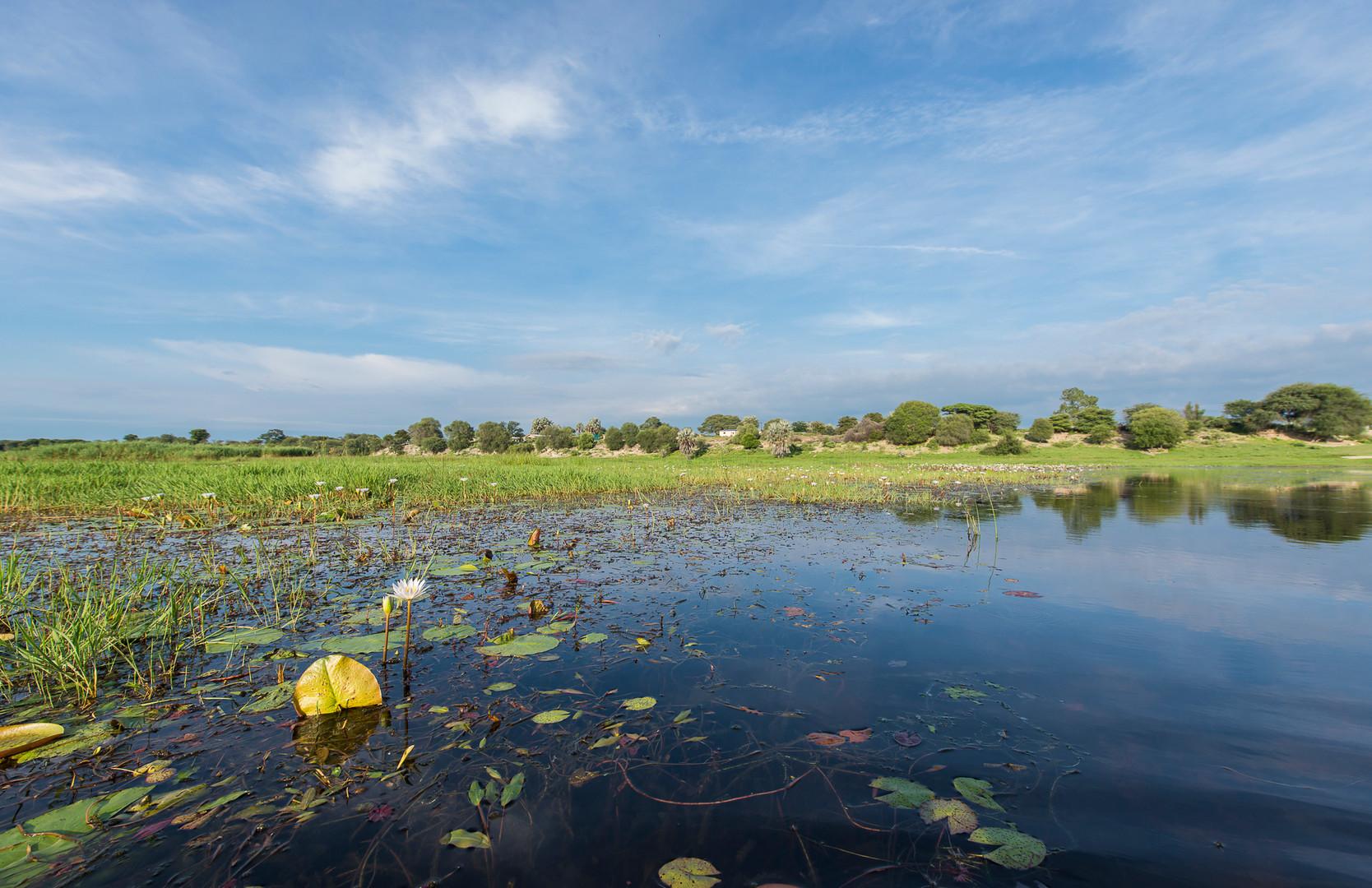 Boteti river Botswana