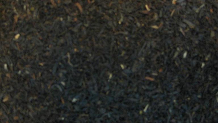 Negro Darjeeling