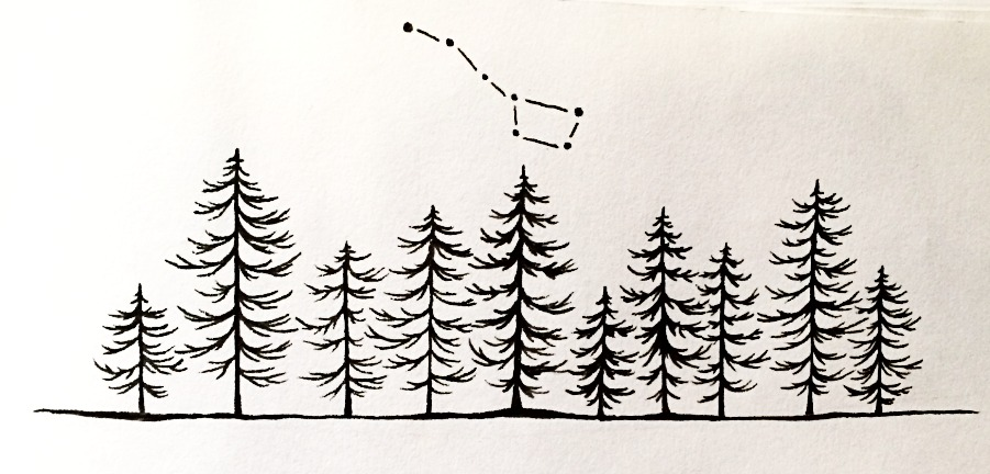 North Treeline