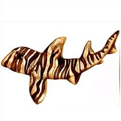 29/365 Zebra Bullhead Shark