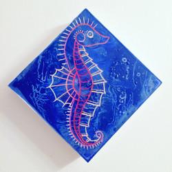 Seahorse *