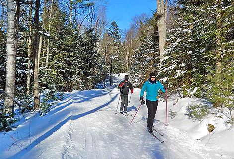 skiing-image.jpg