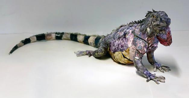 """Pink Iguana"""