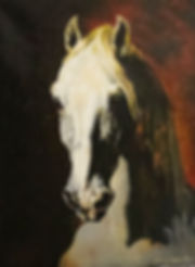 Head Of White Horse 27.x39.jpg