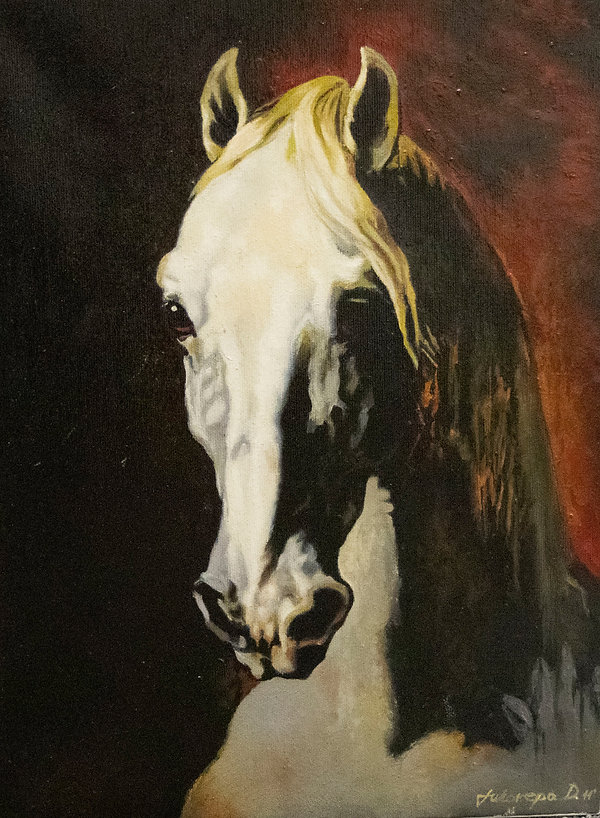 Head Of White Horse 27.x39.jpg