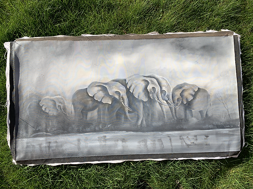 Elephants and the River