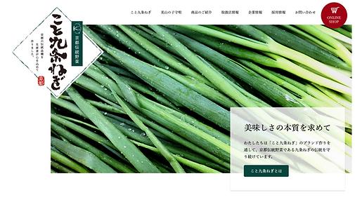 koto_website.png