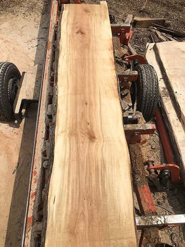 Silver Maple boards