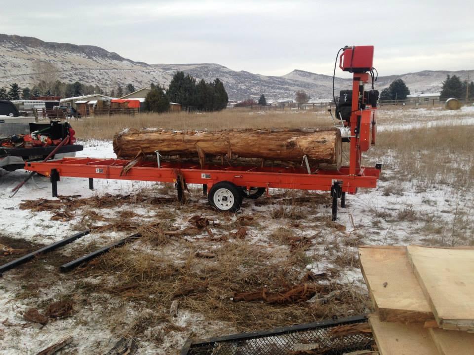 Cottonwood in Colorado.
