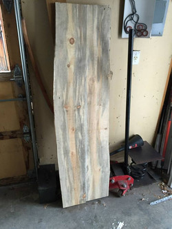"""Beetle kill """"blue"""" pine from Colorado."""